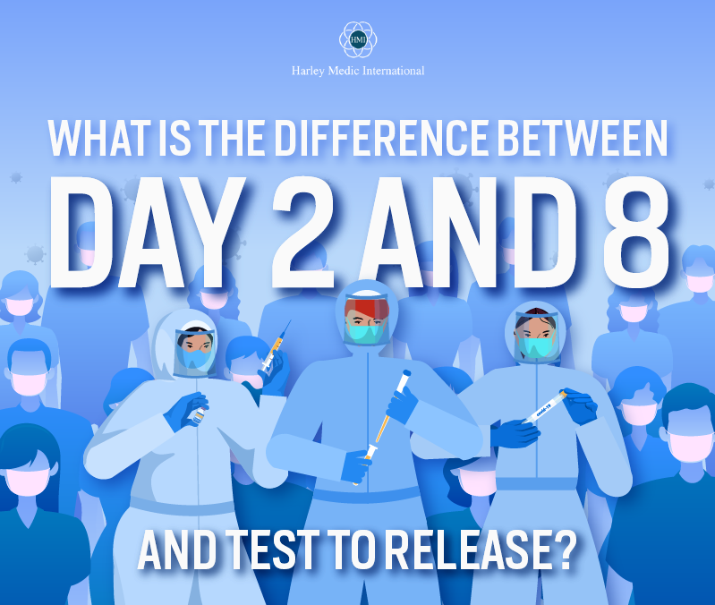 What Is the Difference Between Day 2 And 8 And Test to Release- featured image